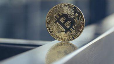 die-nydig-umfrage-zeigt,-dass-47-millionen-us-buerger-bitcoin-besitzen